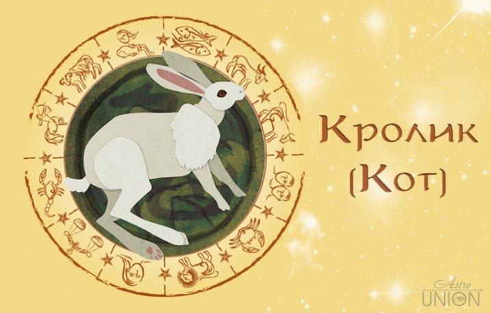 кот кролик телец гороскоп