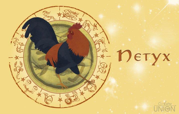 описание петух гороскопа