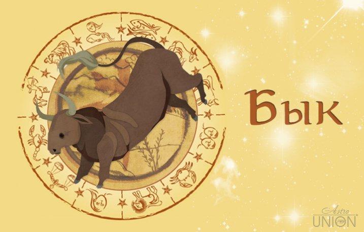 Гороскоп овна рожденного в год быка