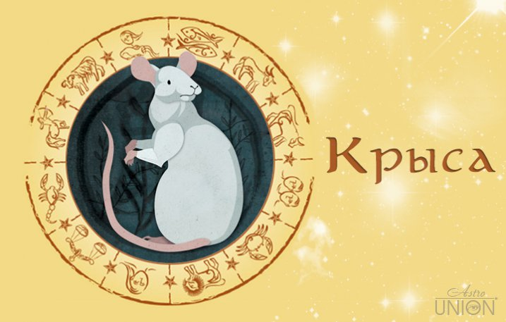 Год Крысы и знаки Зодиака